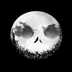 Interpreting Scary Dreams